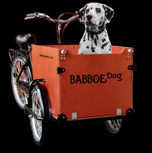 babboe_dog_lastenrad